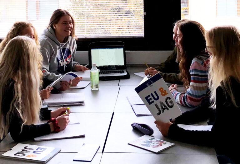 Unga från Sydskåne lär sig mer om EU
