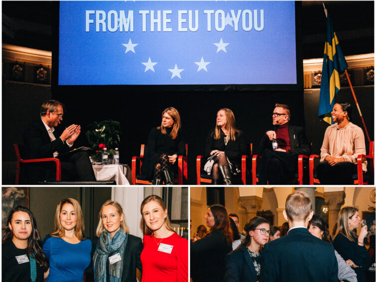 "Vår Talk Show ""From the EU to You"" blev en succé!"