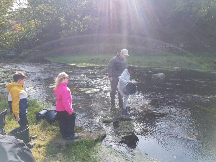Österlens åar skapar ringar på vattnet i EU-finansierat projekt
