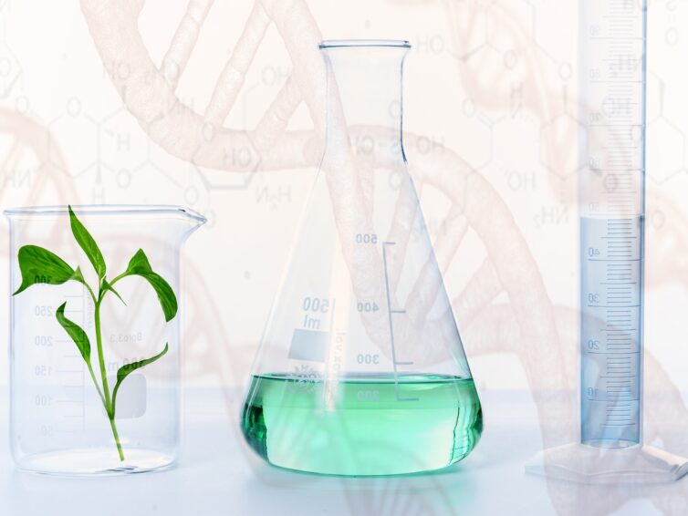 EU:s nya kemikaliestrategi