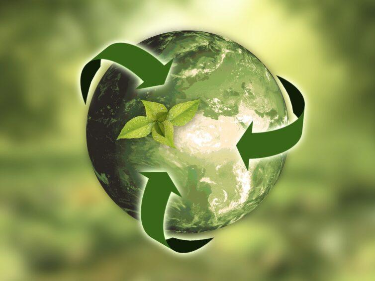 Klimatomställning – från lokalt till globalt